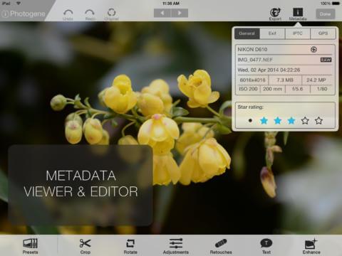 Фоторедактор для iPad и iPhone - Photogene