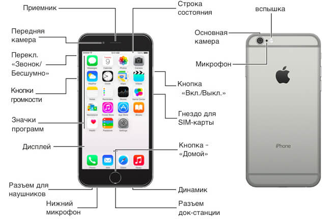 Как пользоваться айфоном 6s для новичков
